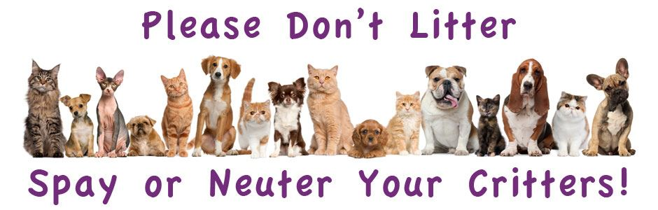 Spay and neuter banner